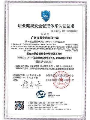 爵士龙-职业健康安全管理体系认证证书