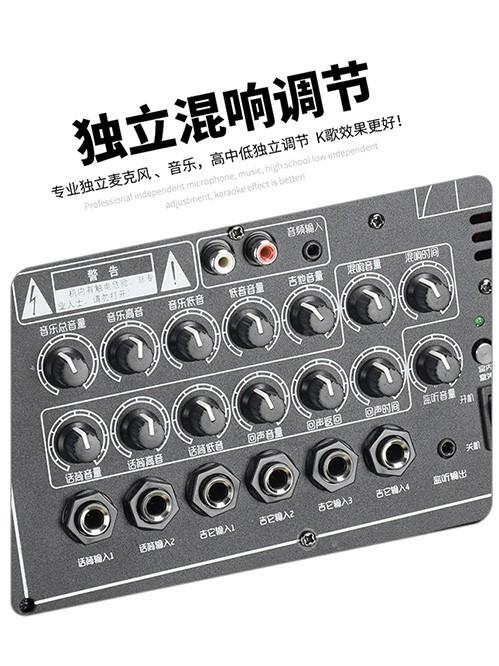 F225系列手提式音响